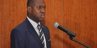 Nigeria to benefit from UNIDO's $60 million investment in trade, others