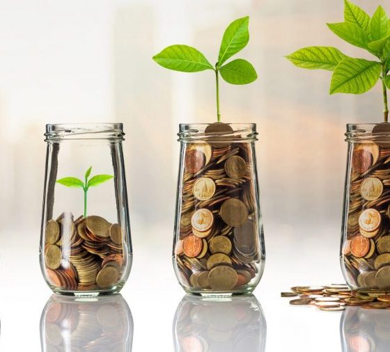 investor, Steps to investing, Steps to developing a growth plan for your business, Breaking down the biggest misconceptions young people have about investing, Here's how your business can grow revenue in tough conditions (PART 1), Here are ways to find the right investor for your business, How to build up your investment knowledge, This simple advice could help solve your investment challenges