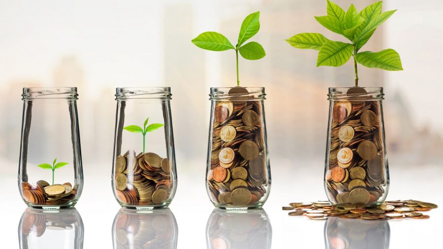 Steps to investing, Steps to developing a growth plan for your business, Breaking down the biggest misconceptions young people have about investing , Here's how your business can grow revenue in tough conditions (PART 1)