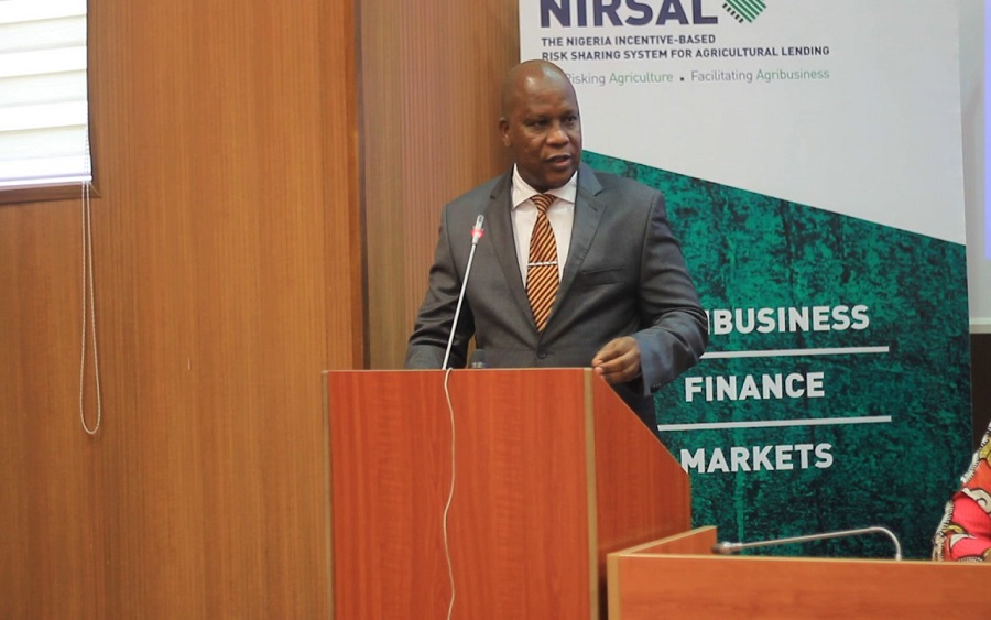 400,000 people benefit from NIRSAL scheme