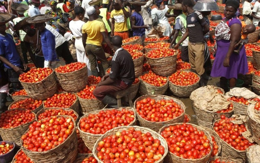 Local rice floods major markets in Nigeria, as frozen food sellers lament low patronage, tomato paste