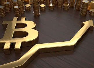 Bitcoin users rise in Nigeria despite Senate, CBN campaign against it, Answering the big Bitcoin question - buy, sell or hold?, Bitcoin hits a 12-month low