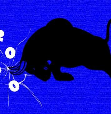 Illustration: Ogieva Imasuen