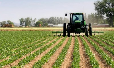 Agritech, Efficient Power: Addressing a Critical Element in Nigeria's Agro-Industrial Revolution
