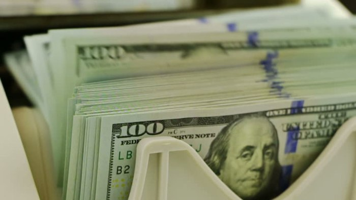 dollar foreign debt,The US dollar remains king