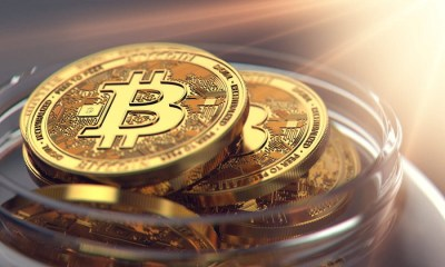 BTC Whales, Bitcoin is scarce, entities, individuals hold for long term, How Cryptocurrency-Based Companies Like Patricia are Shaping the Digital Currency Market in Nigeria, How Bitcoin Comes in Handy in Moments of Uncertainty