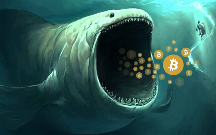 BREAKING: A billion dollar worth of Bitcoin moved by unknown identity