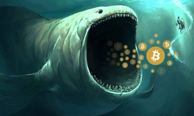 3 BTC whales move 140 million worth of Bitcoins from Binance