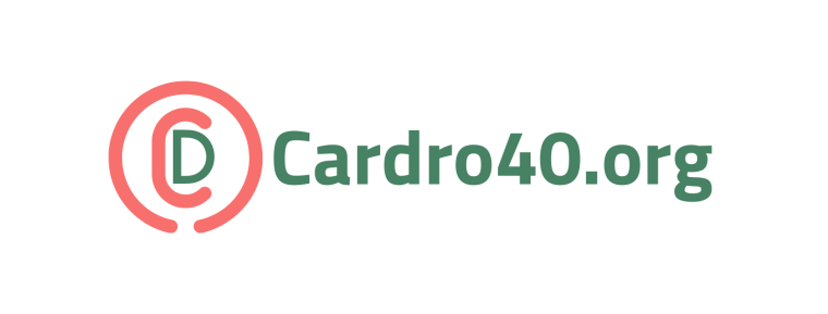The Real Cardro Pro developers