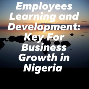 Employees Learning and Development: Key For Business Growth in Nigeria