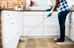 Domestic Worker Cleaning