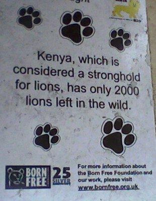 lion_statues_nrb_plaque