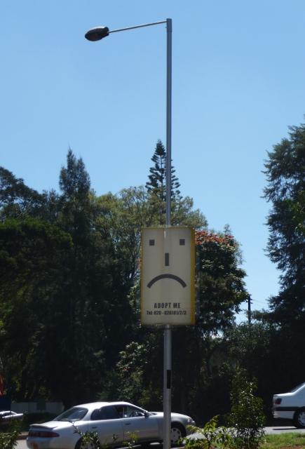 adopt-a-street-light