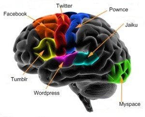 Social Networking & Our Brains