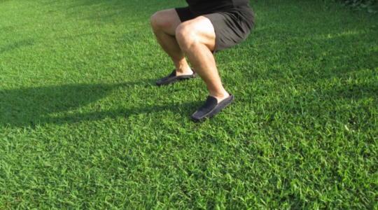 筋力トレーニング スクワット