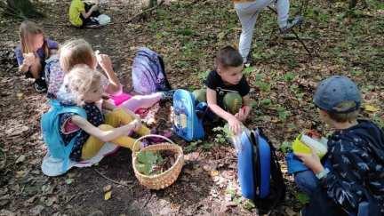 Nasze leśne wczesnoszkolniaki