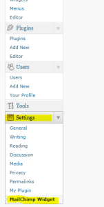 Mail Chimp API Key Settings