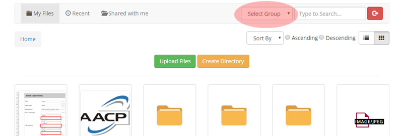 File Groups Can Be Selected By Users On Frontend In File Uploader