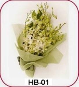 HB01-1