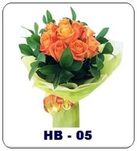 HB05-2