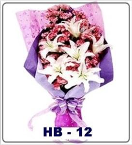 HB12-1