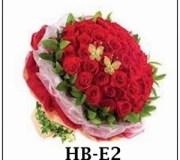 Hb-E2