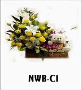 NWB09-1