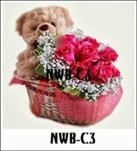 NWB10-1