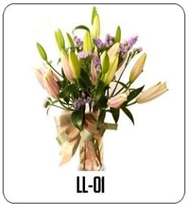 LL01-1