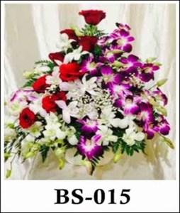 BS015
