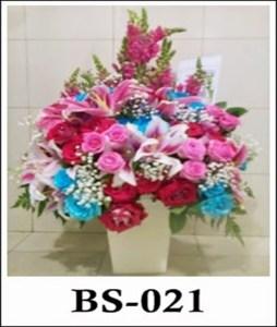 BS021