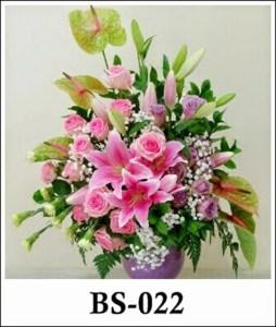 BS022