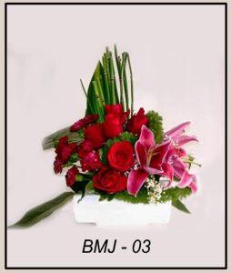 BMJ03