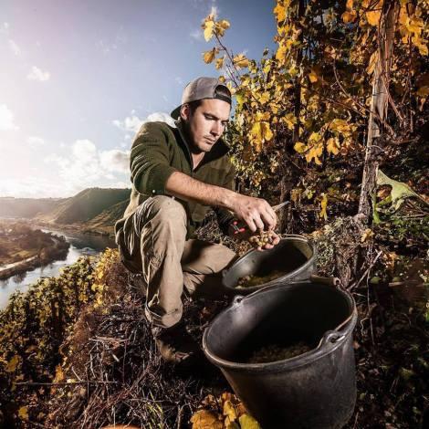Matthias w winnicy ©Weingut Knebel