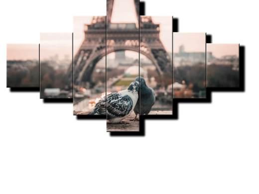 holubky v parizi pri eiffelovke 7d