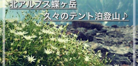 蝶ヶ岳トップ