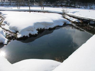 テーブル根木の池
