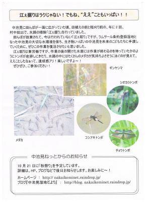 江堀りイベントチラシ