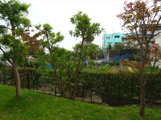愛甲石田駅徒歩5分の鉄筋コンクリート造ファミリーマンション3LDK