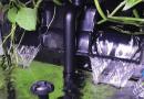 6 Jenis Filter Akuarium Yang Perlu Anda Ketahui