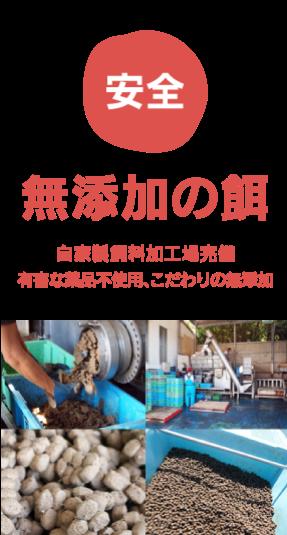 安全/無添加の餌…自家製飼料加工場完備。有害な薬品不使用、こだわりの無添加