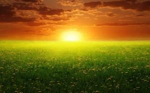 dream sunset