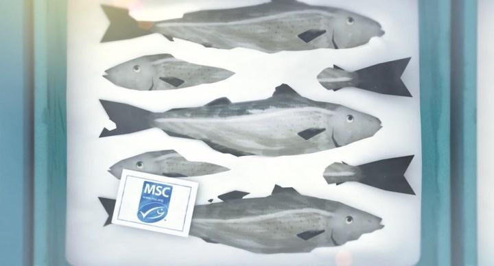 덴마크 어업 농가 90% 지속가능 인증 받아