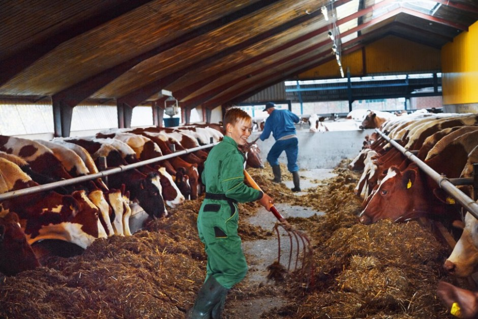 알라는 축산농가가 소유한 협동조합 형태 유가공 업체다(Arla Foods 제공)