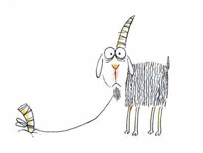 ابله گوسفند
