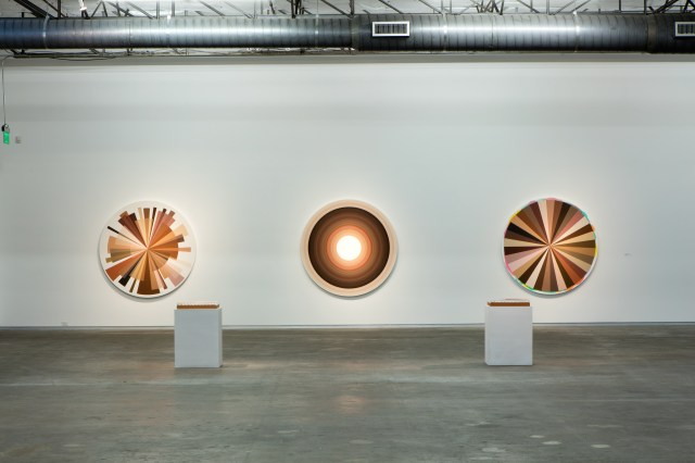 Adriana Varejao Big Polvo Color Wheels 2015 Dallas contemporary review