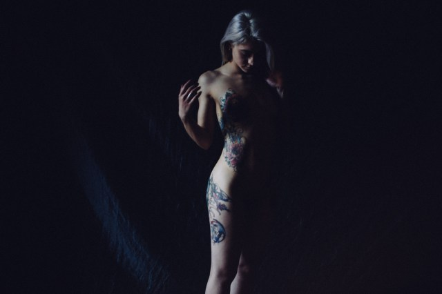 Stelladiplastica_18