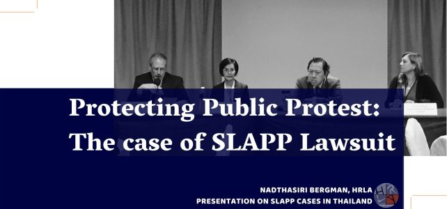 Protecting Public Protest: The case of SLAPP Lawsuit