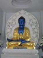 buddha da medicina