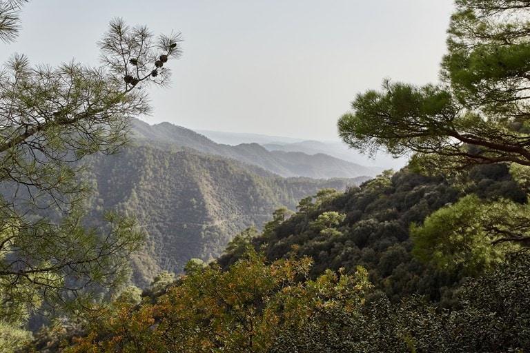 Pohoří Trodoos, Kypr